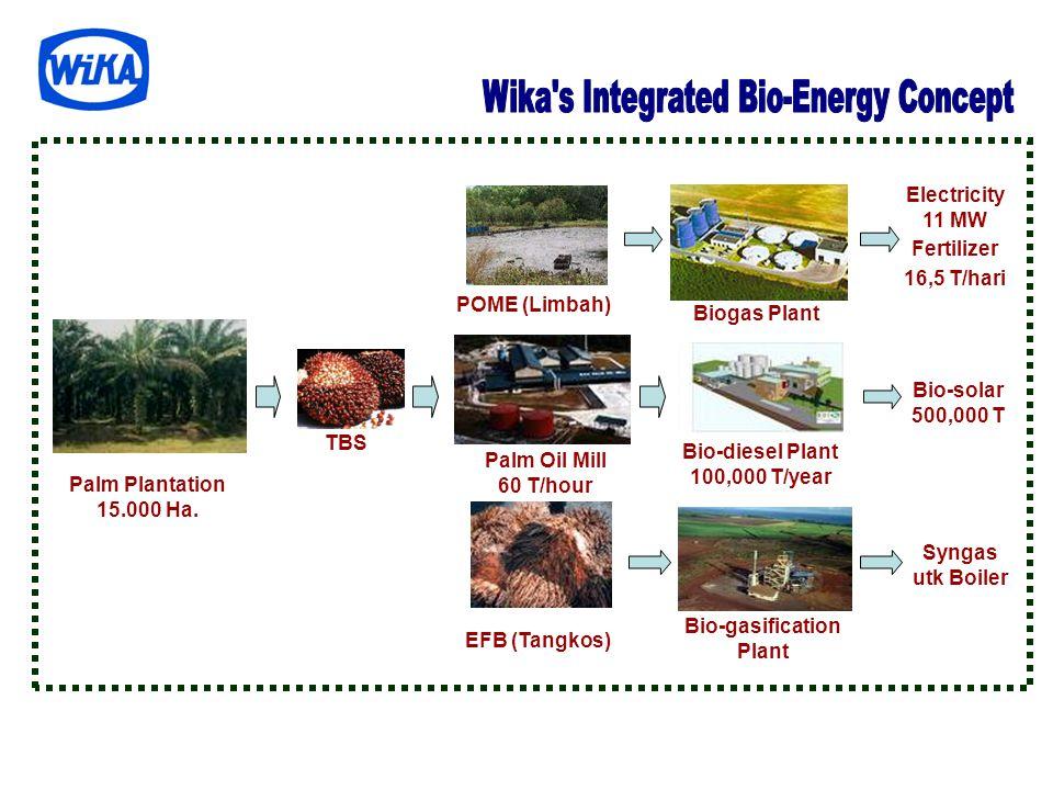 Bio-diesel Plant 100,000 T/year Bio-gasification Plant