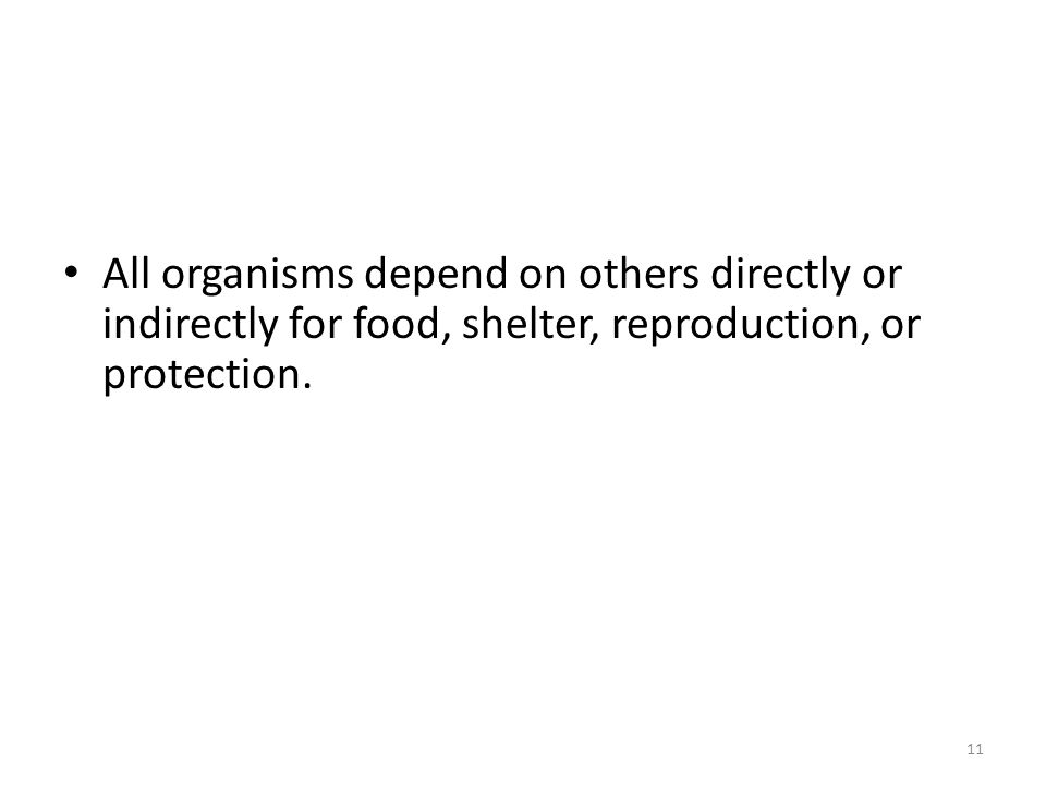 All organisms depend on others directly or indirectly for food, shelter, reproduction, or protection.