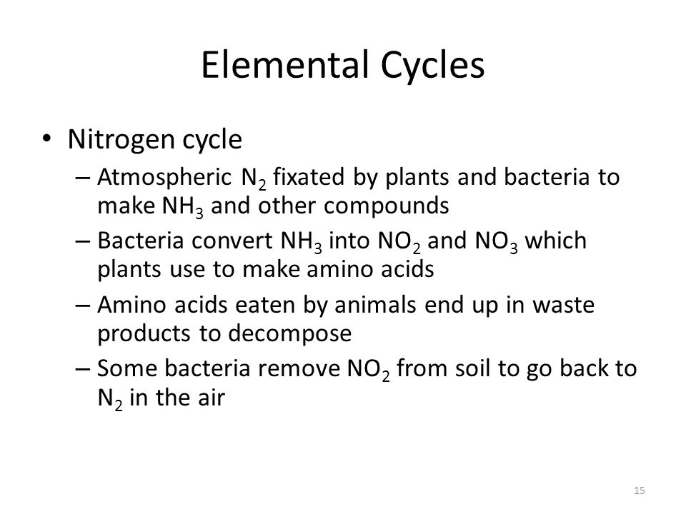 Elemental Cycles Nitrogen cycle