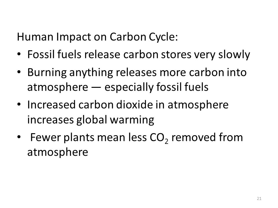 Human Impact on Carbon Cycle: