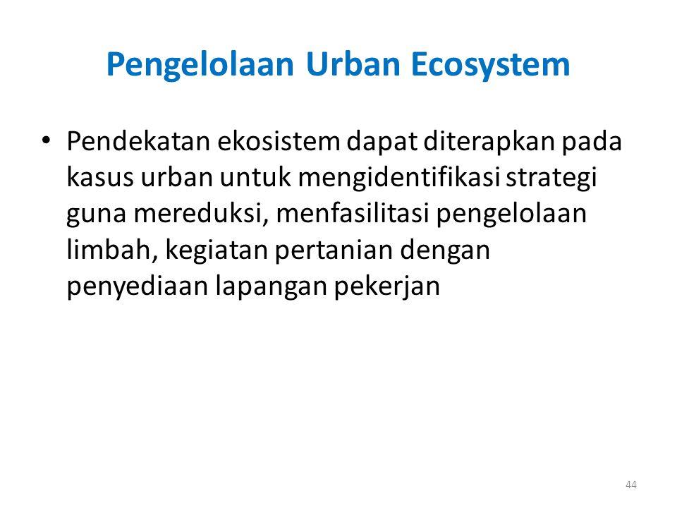 Pengelolaan Urban Ecosystem