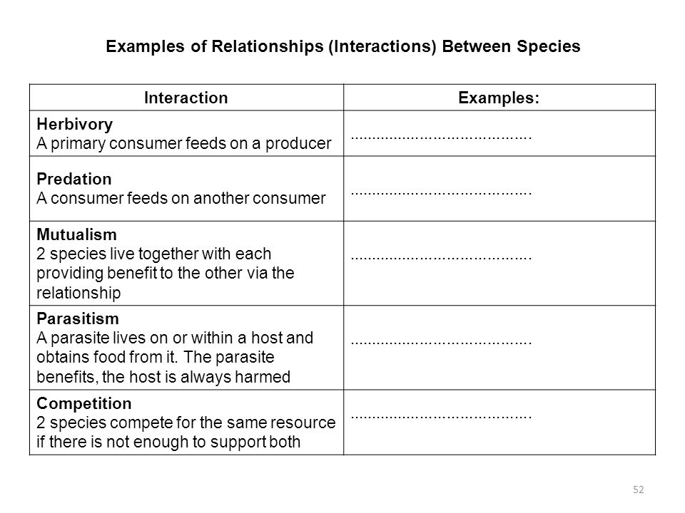 Examples of Relationships (Interactions) Between Species