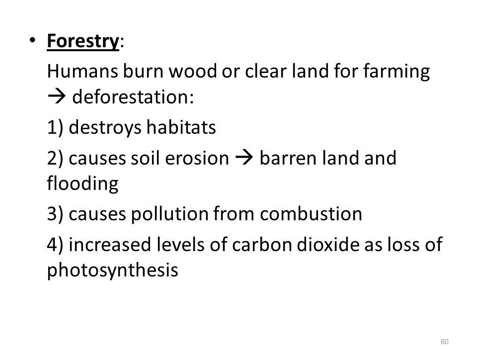 Forestry: Humans burn wood or clear land for farming  deforestation: 1) destroys habitats. 2) causes soil erosion  barren land and flooding.