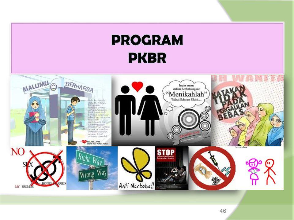 PROGRAM PKBR