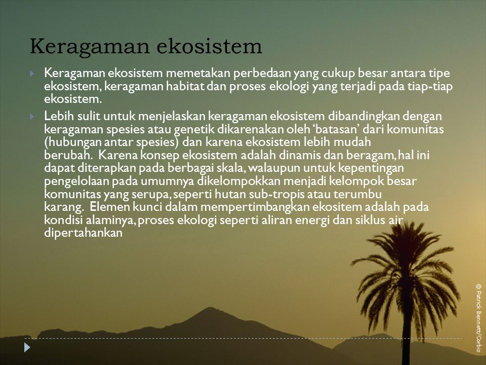 Keragaman ekosistem