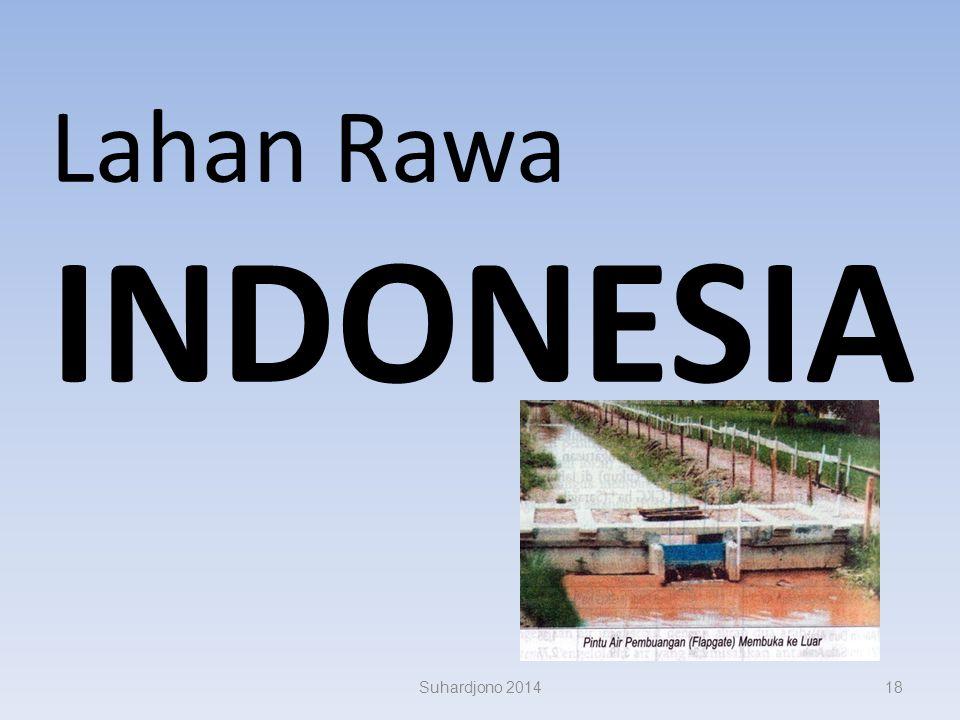 Lahan Rawa INDONESIA Suhardjono 2014