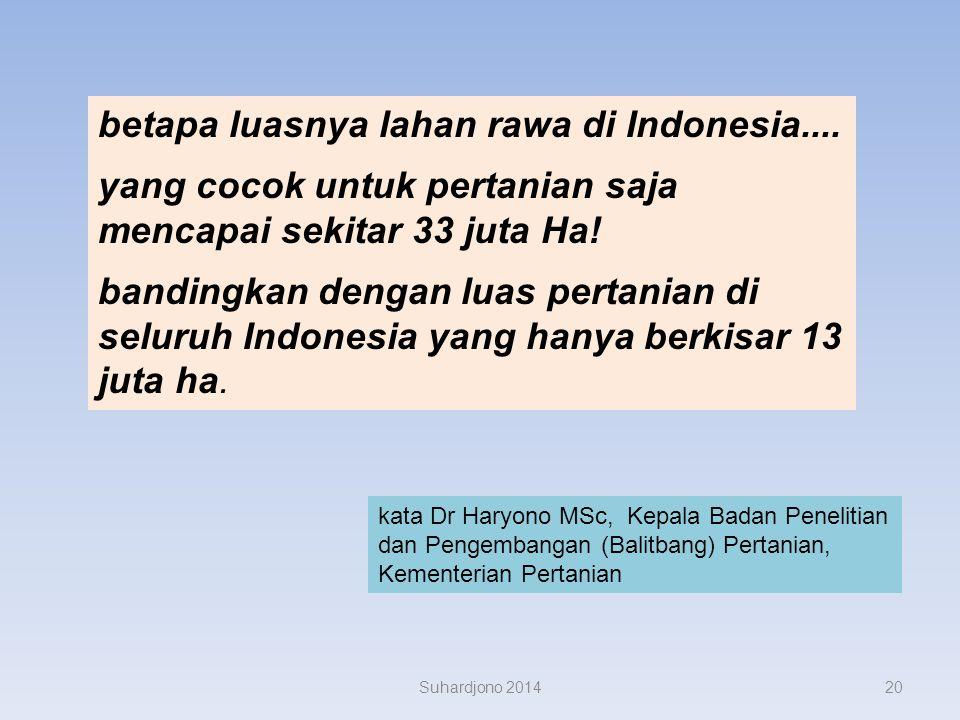 betapa luasnya lahan rawa di Indonesia....