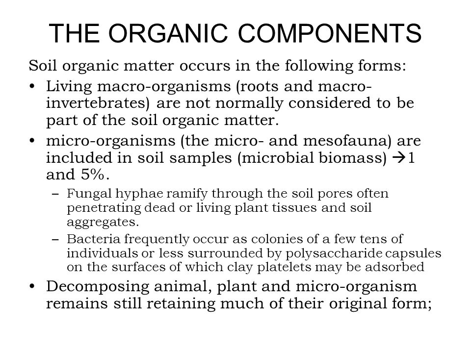 THE ORGANIC COMPONENTS