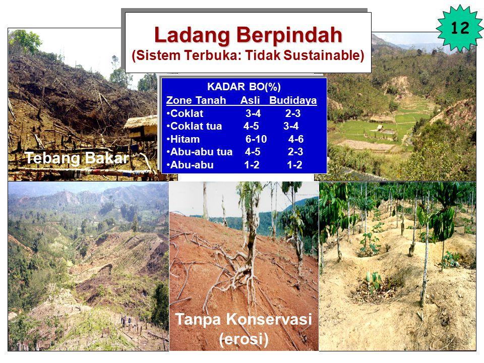 Ladang Berpindah (Sistem Terbuka: Tidak Sustainable)