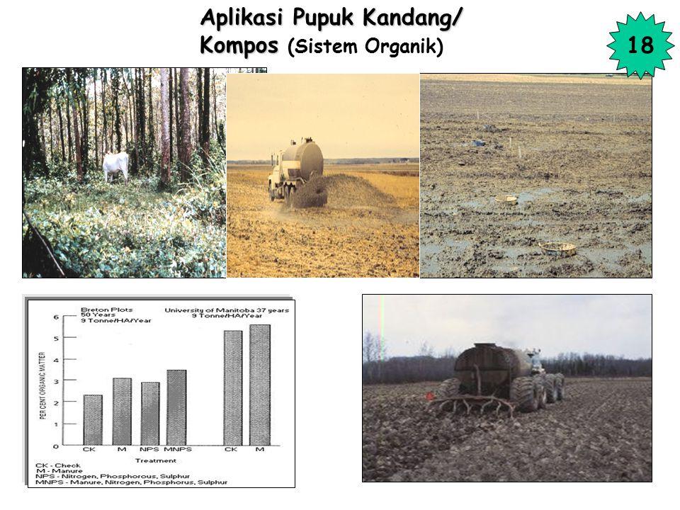 Aplikasi Pupuk Kandang/ Kompos (Sistem Organik)