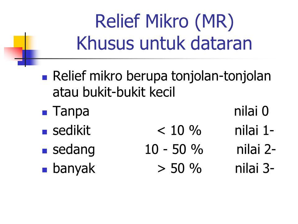 Relief Mikro (MR) Khusus untuk dataran