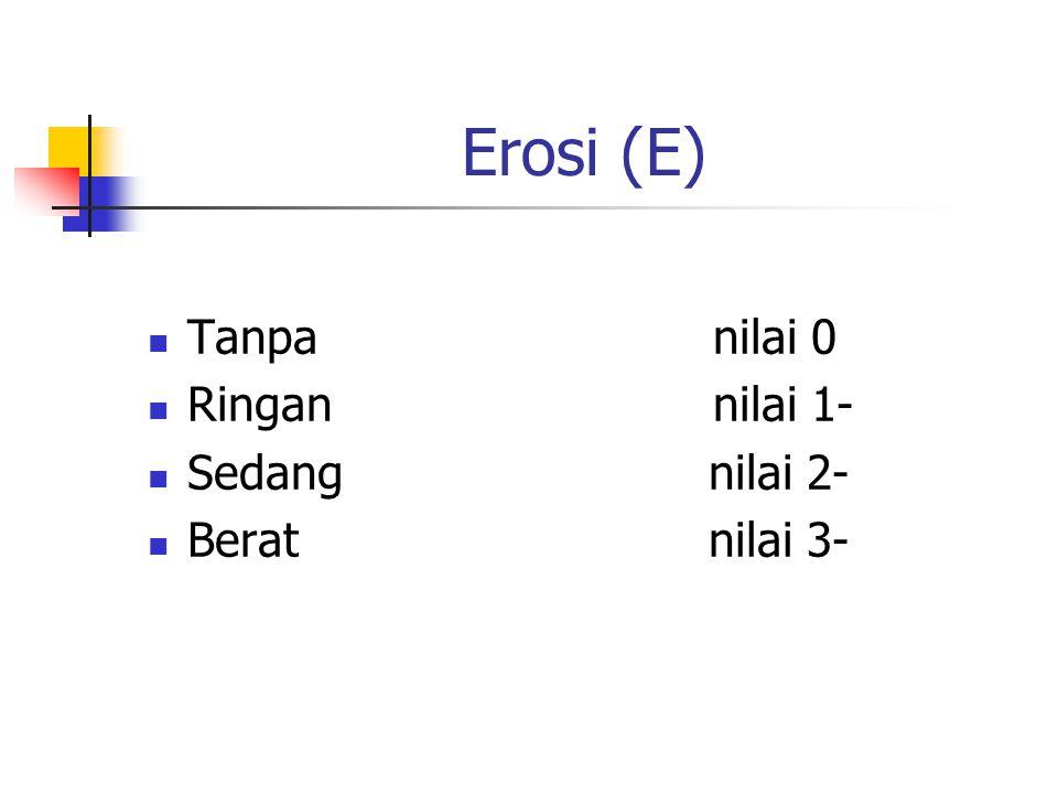 Erosi (E) Tanpa nilai 0. Ringan nilai 1- Sedang nilai 2-