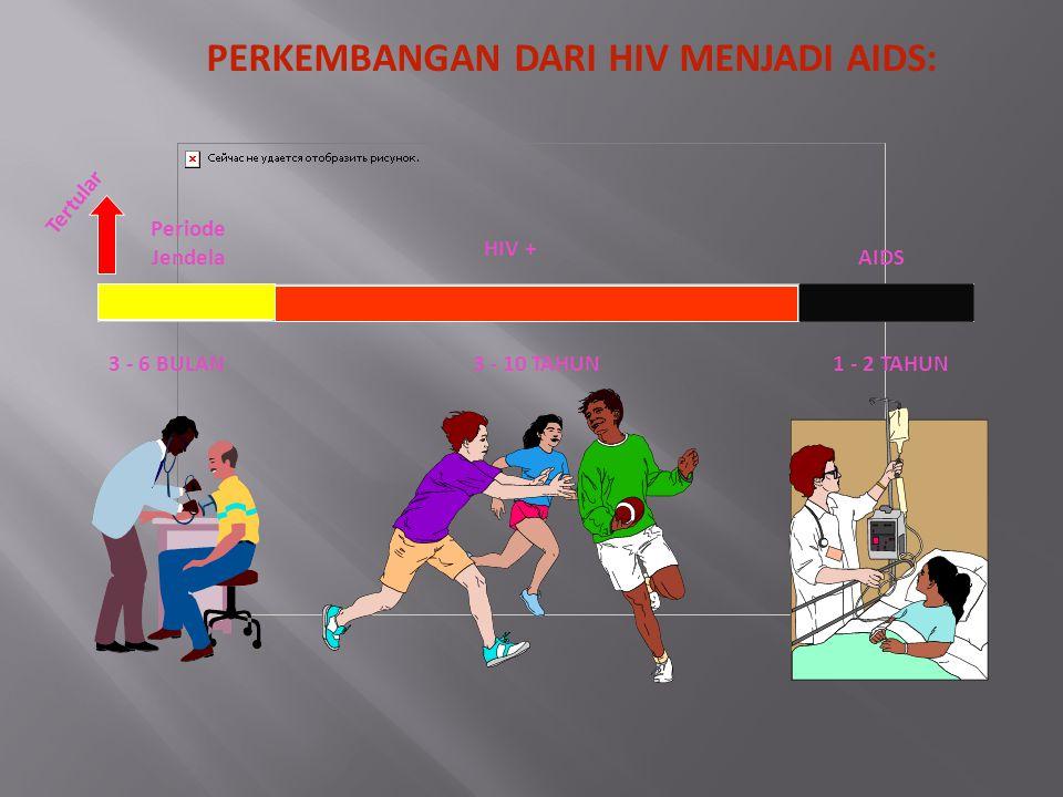 PERKEMBANGAN DARI HIV MENJADI AIDS: