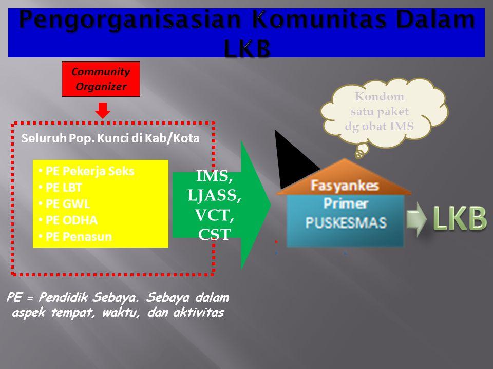 Pengorganisasian Komunitas Dalam LKB