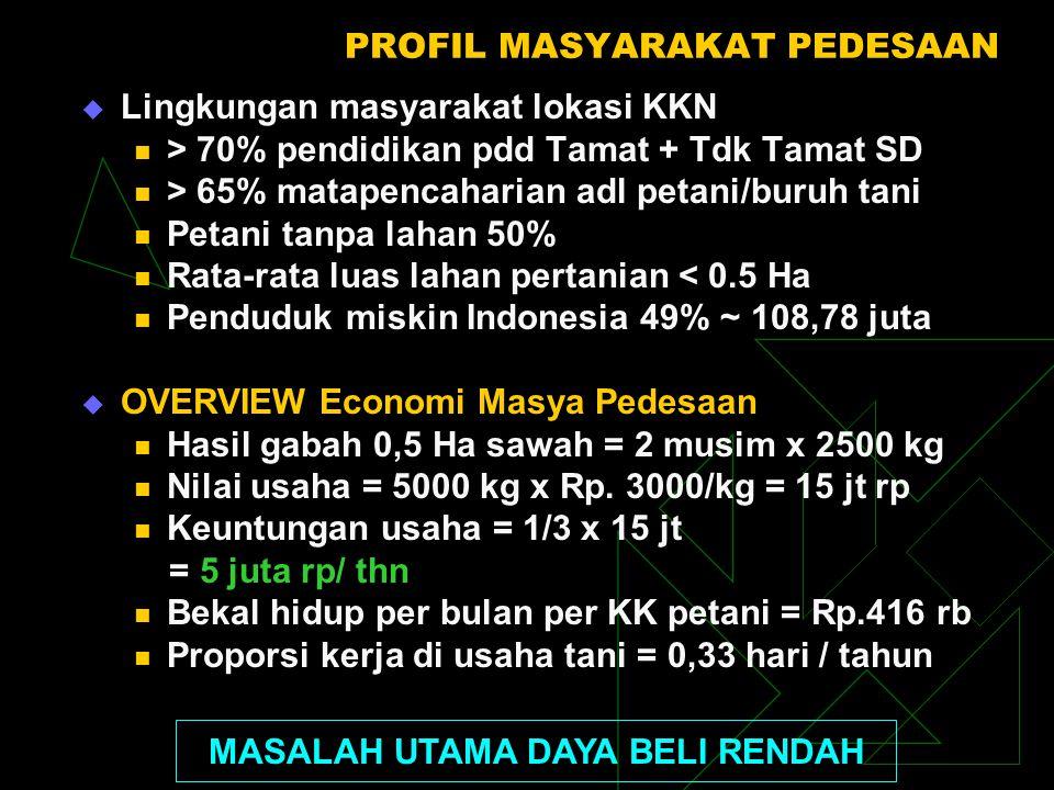 PROFIL MASYARAKAT PEDESAAN