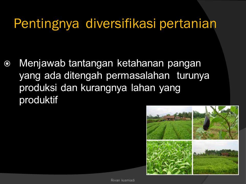 Pentingnya diversifikasi pertanian