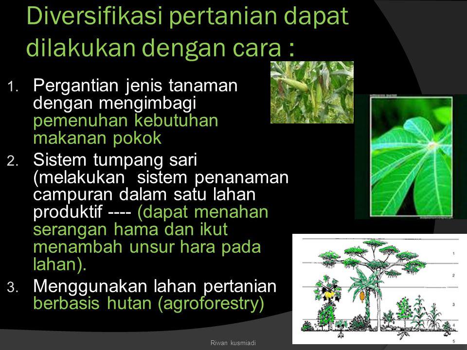 Diversifikasi pertanian dapat dilakukan dengan cara :