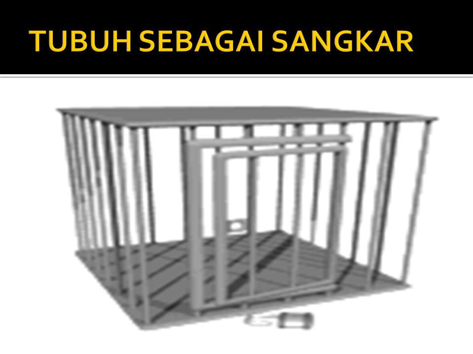 TUBUH SEBAGAI SANGKAR