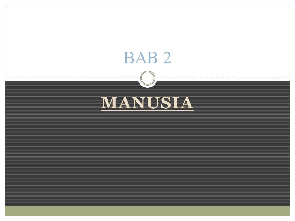 BAB 2 MANUSIA