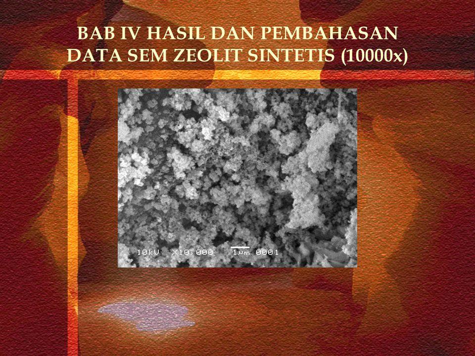 BAB IV HASIL DAN PEMBAHASAN DATA SEM ZEOLIT SINTETIS (10000x)
