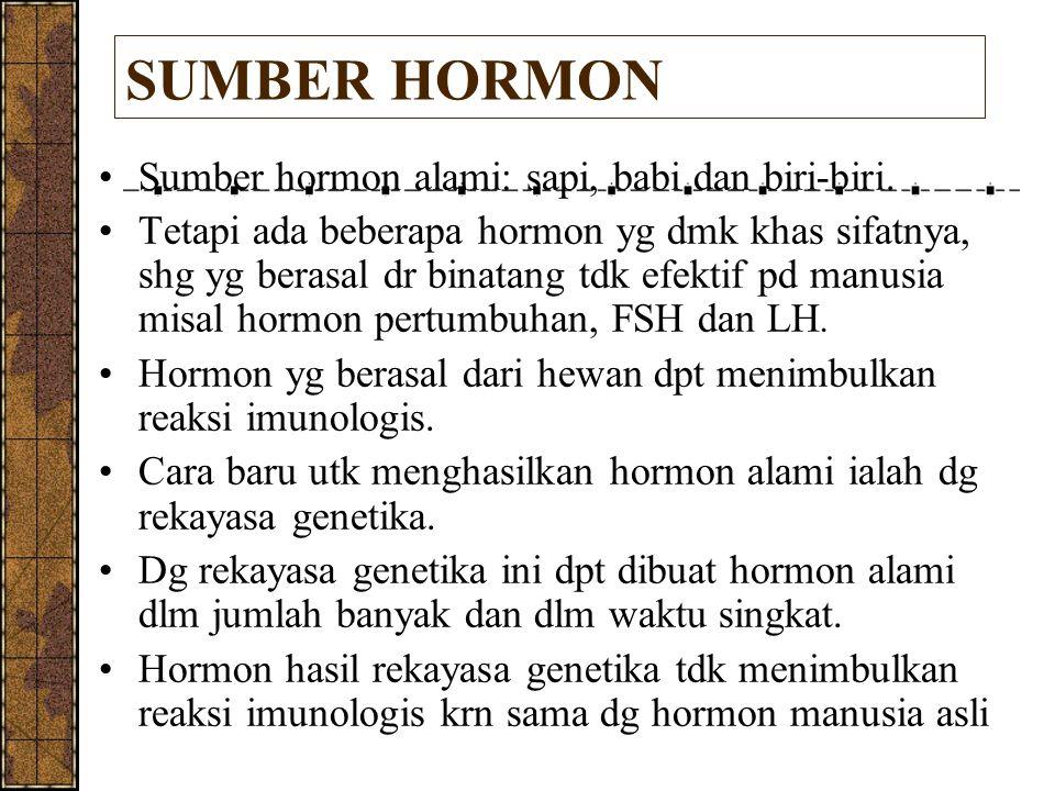 SUMBER HORMON Sumber hormon alami: sapi, babi dan biri-biri.