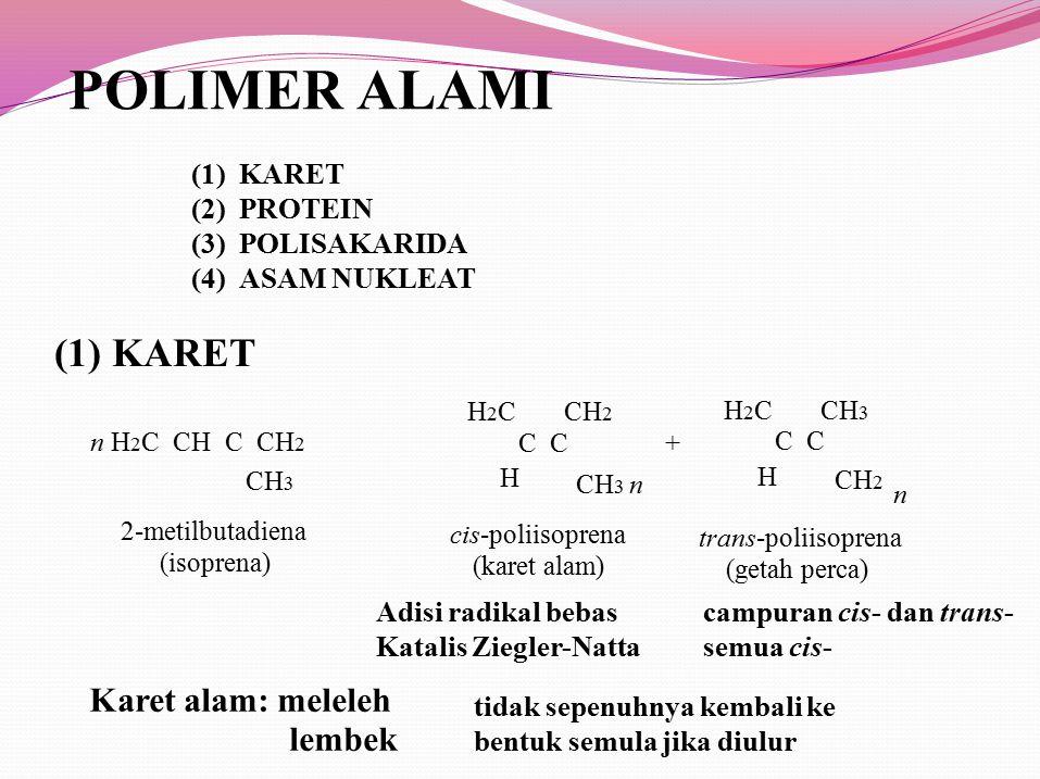 POLIMER ALAMI (1) KARET Karet alam: meleleh lembek (1) (2) (3) (4)