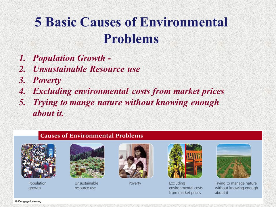 5 Basic Causes of Environmental Problems