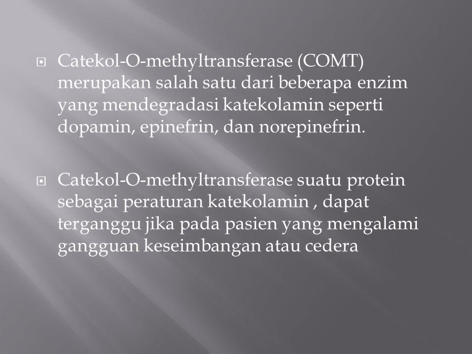 Catekol-O-methyltransferase (COMT) merupakan salah satu dari beberapa enzim yang mendegradasi katekolamin seperti dopamin, epinefrin, dan norepinefrin.
