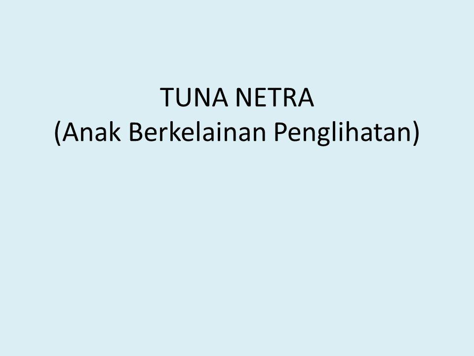 TUNA NETRA (Anak Berkelainan Penglihatan)