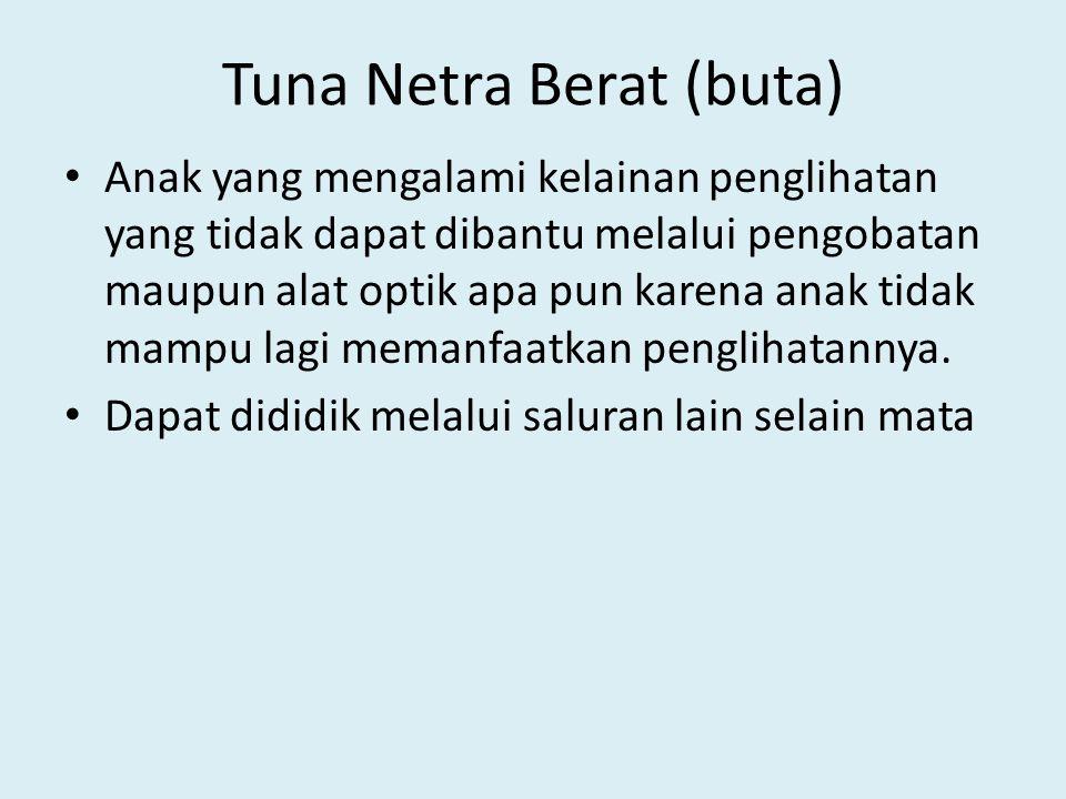 Tuna Netra Berat (buta)