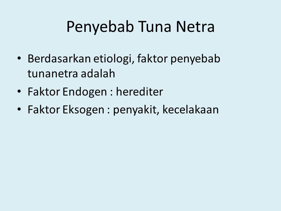 Penyebab Tuna Netra Berdasarkan etiologi, faktor penyebab tunanetra adalah. Faktor Endogen : herediter.