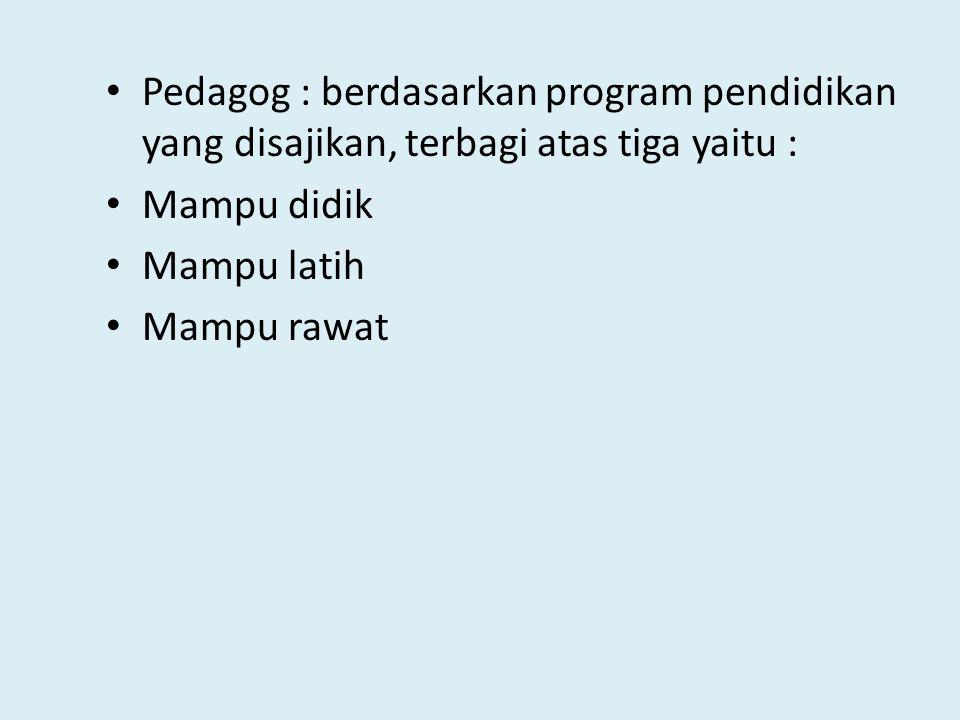 Pedagog : berdasarkan program pendidikan yang disajikan, terbagi atas tiga yaitu :
