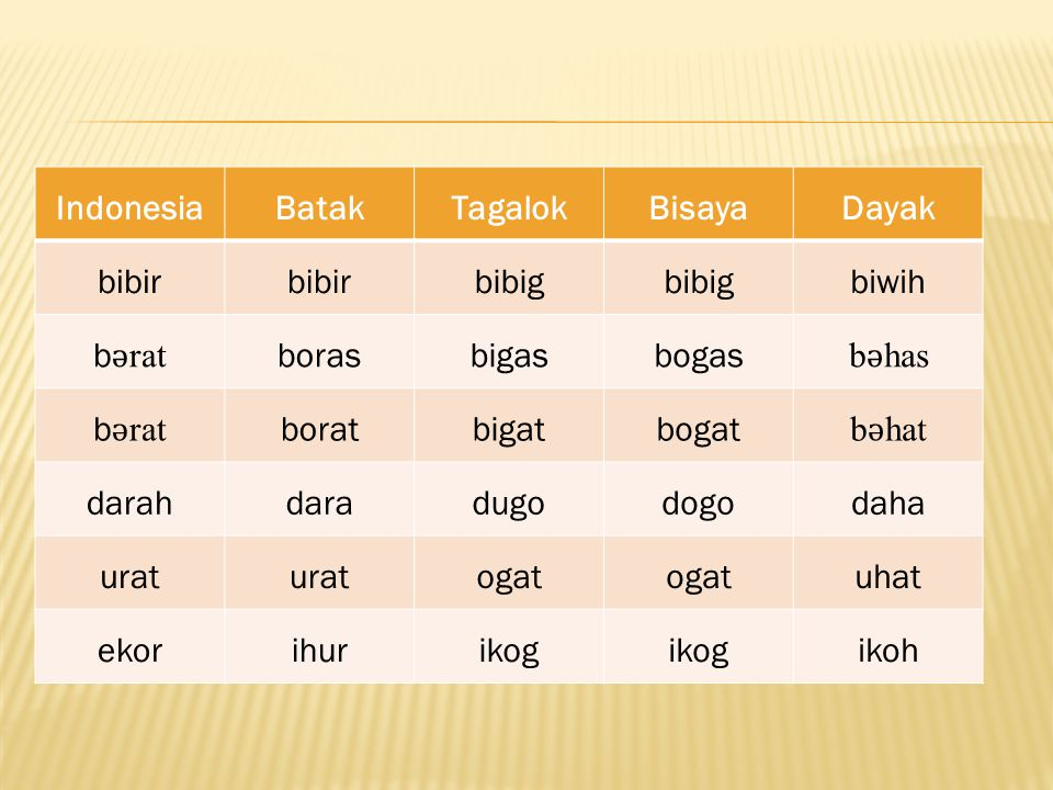 Indonesia Batak. Tagalok. Bisaya. Dayak. bibir. bibig. biwih. bǝrat. boras. bigas. bogas.