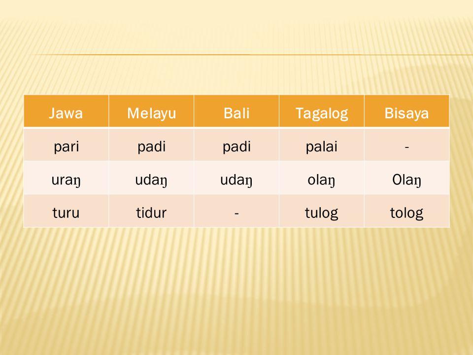 Jawa Melayu Bali Tagalog Bisaya pari padi palai - uraŋ udaŋ olaŋ Olaŋ turu tidur tulog tolog