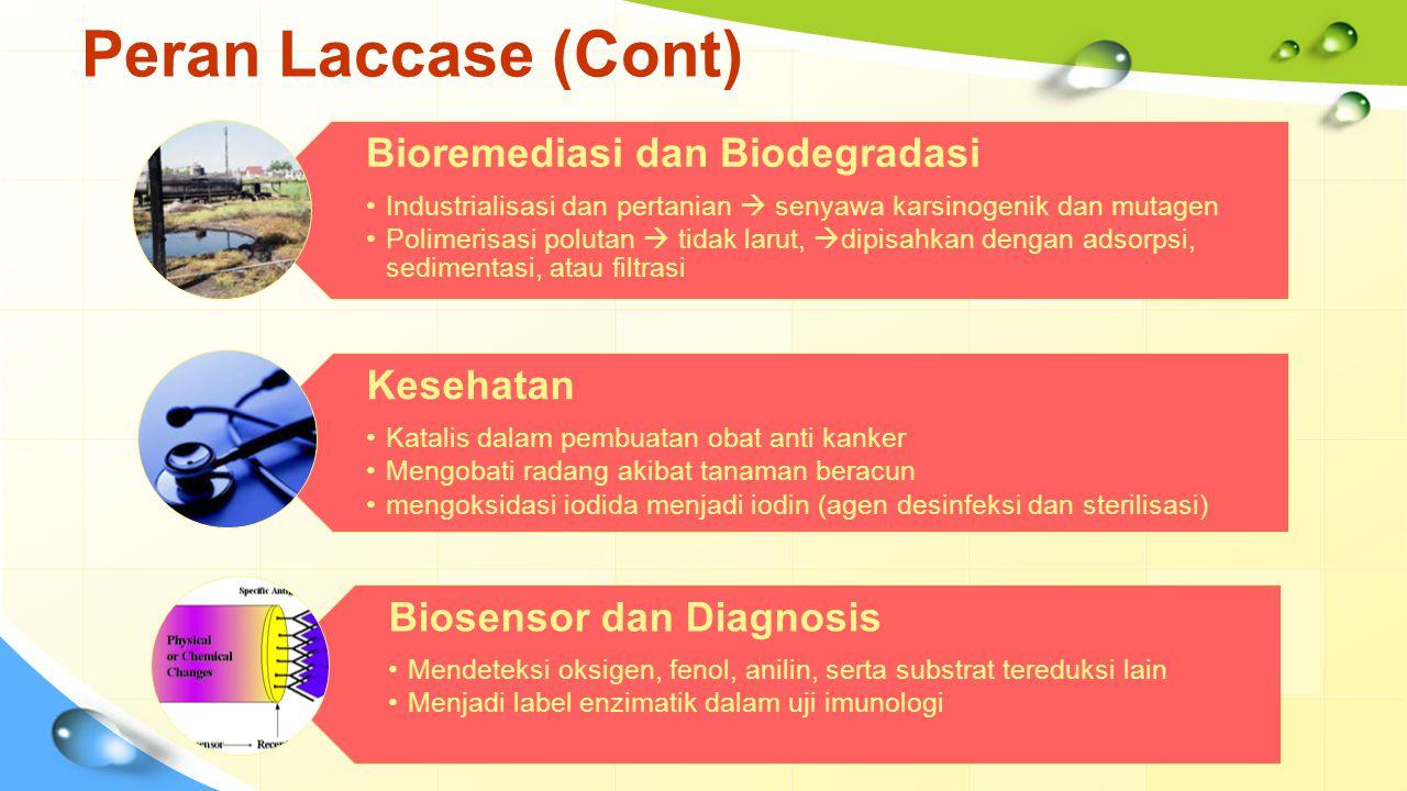 Peran Laccase (Cont) Bioremediasi dan Biodegradasi Kesehatan