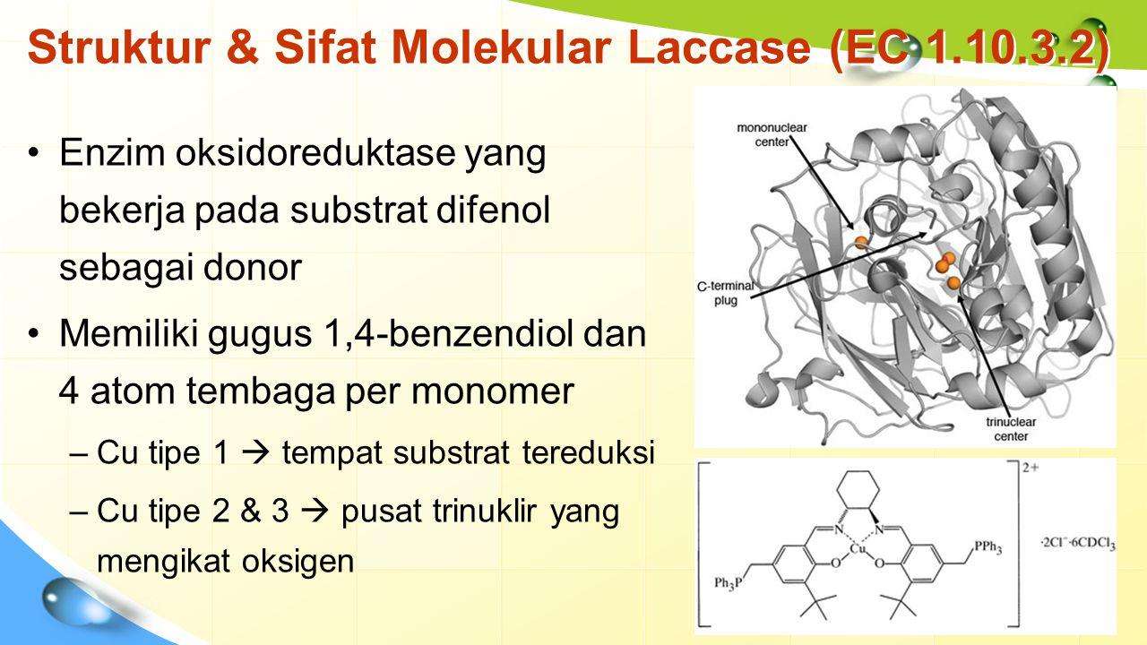 Struktur & Sifat Molekular Laccase (EC 1.10.3.2)