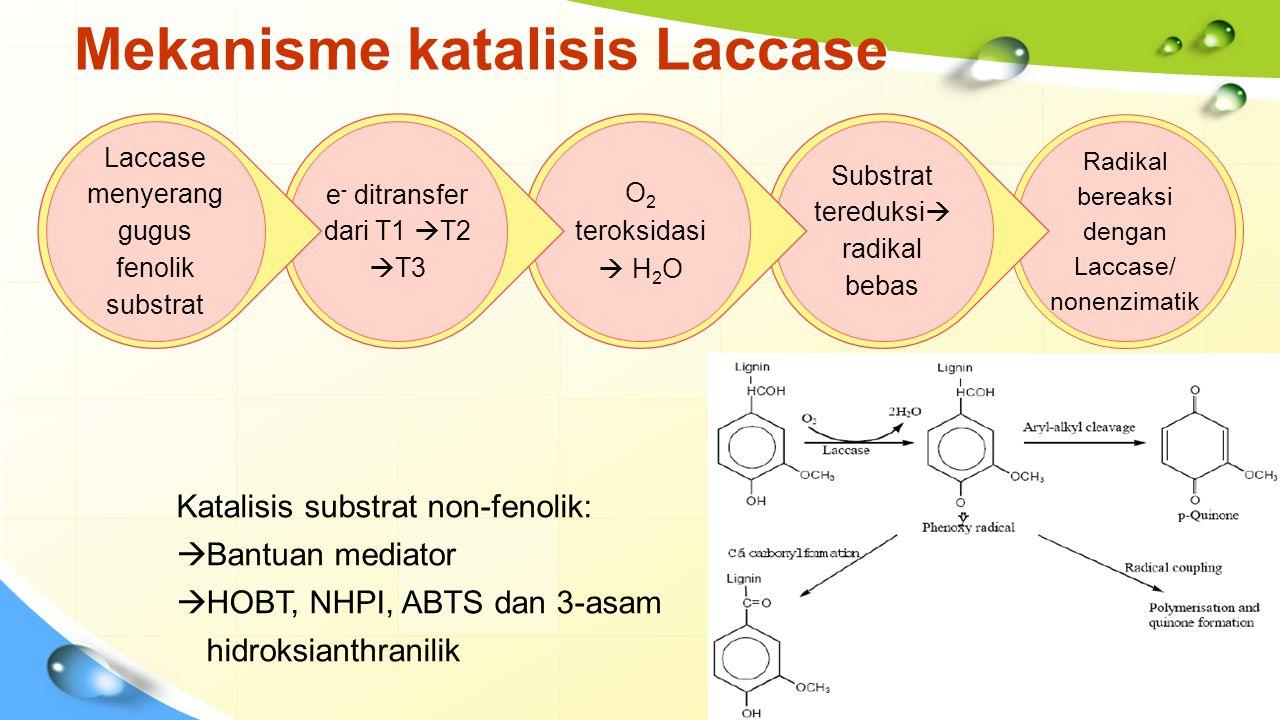 Mekanisme katalisis Laccase