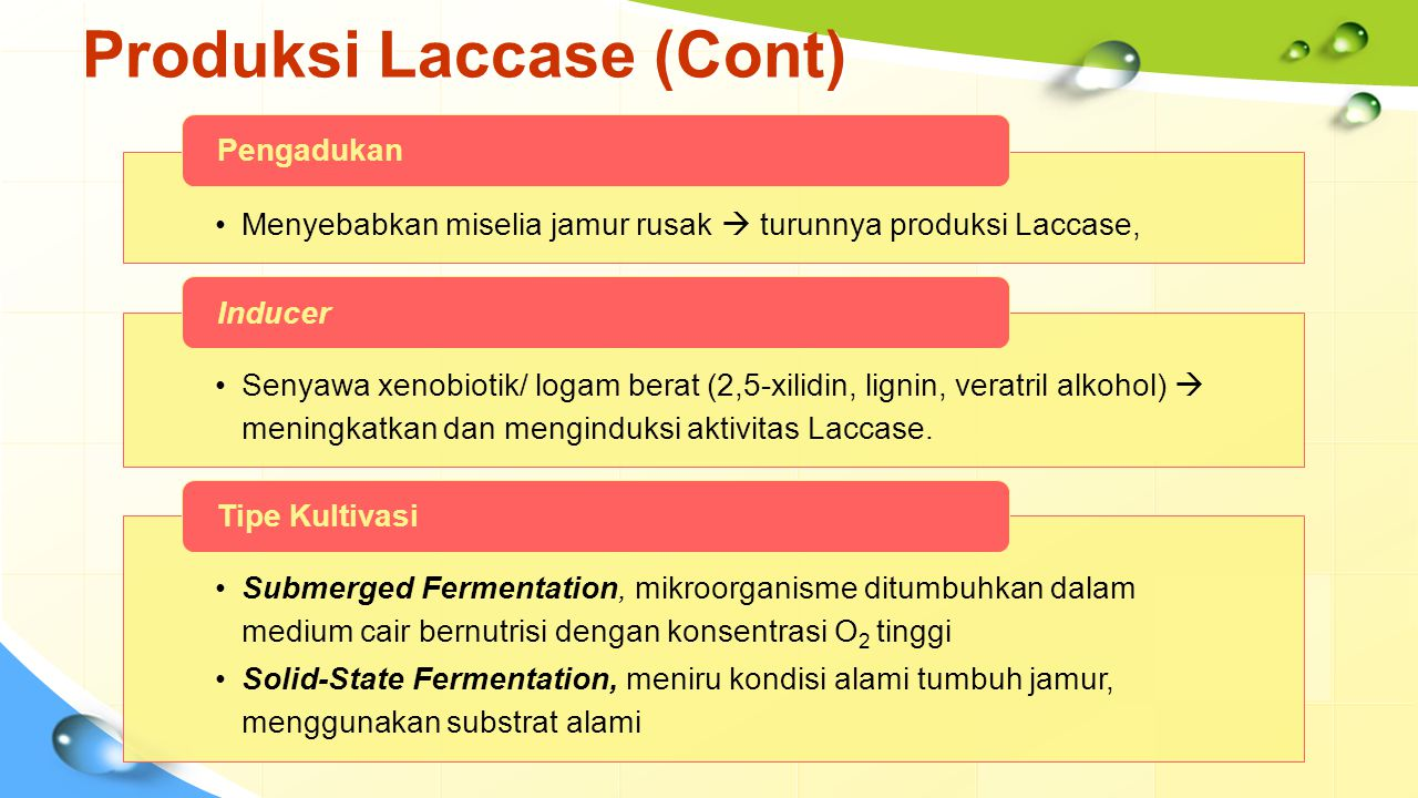 Produksi Laccase (Cont)
