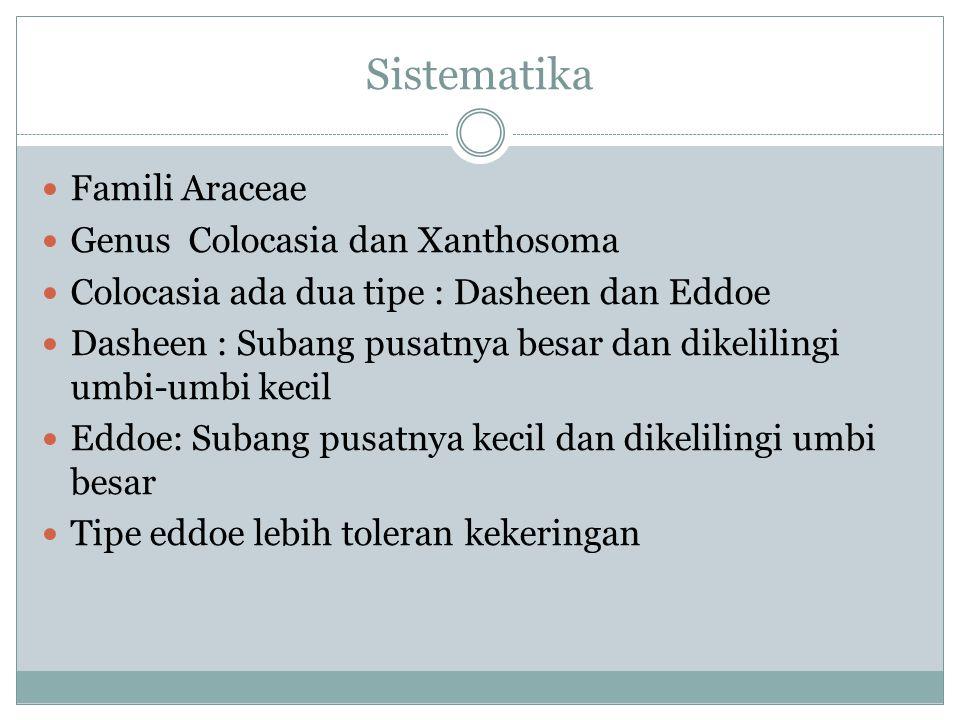 Sistematika Famili Araceae Genus Colocasia dan Xanthosoma