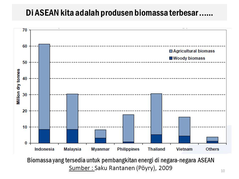 Di ASEAN kita adalah produsen biomassa terbesar ......