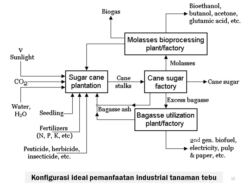 Konfigurasi ideal pemanfaatan industrial tanaman tebu