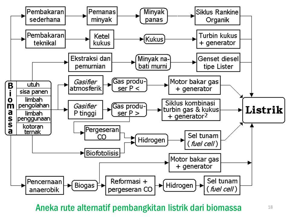 Aneka rute alternatif pembangkitan listrik dari biomassa