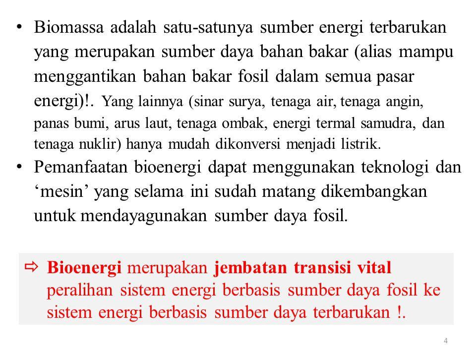 Biomassa adalah satu-satunya sumber energi terbarukan yang merupakan sumber daya bahan bakar (alias mampu menggantikan bahan bakar fosil dalam semua pasar energi)!. Yang lainnya (sinar surya, tenaga air, tenaga angin, panas bumi, arus laut, tenaga ombak, energi termal samudra, dan tenaga nuklir) hanya mudah dikonversi menjadi listrik.
