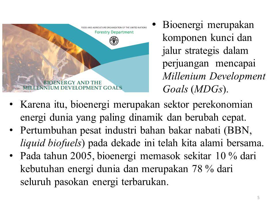  Bioenergi merupakan komponen kunci dan jalur strategis dalam perjuangan mencapai Millenium Development Goals (MDGs).