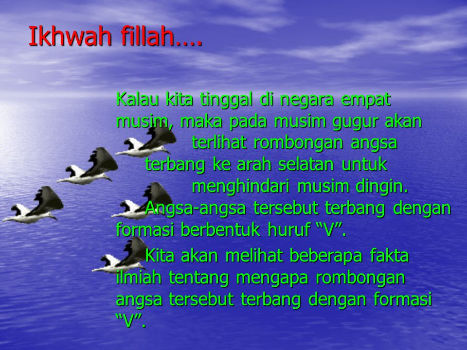 Ikhwah fillah….