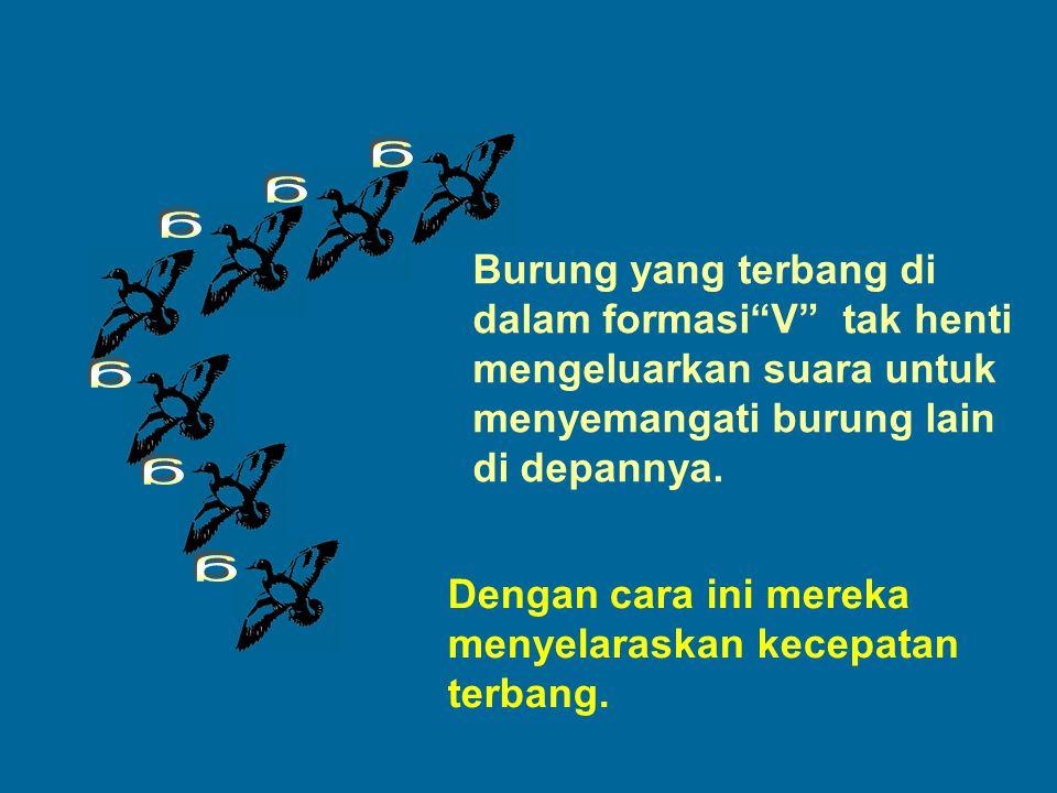 g g. g. Burung yang terbang di dalam formasi V tak henti mengeluarkan suara untuk menyemangati burung lain di depannya.