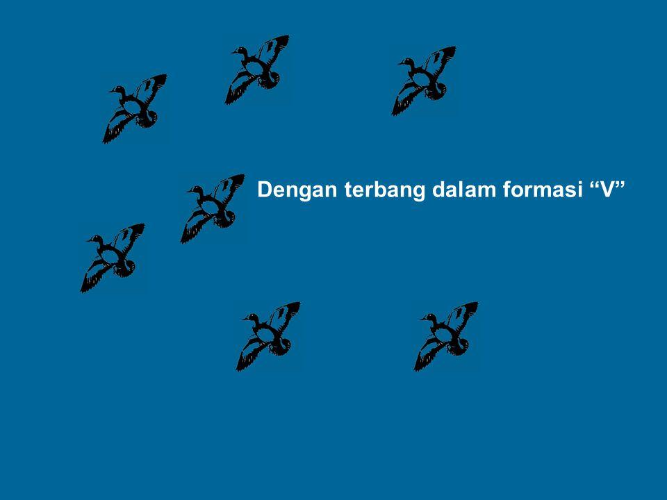 Dengan terbang dalam formasi V