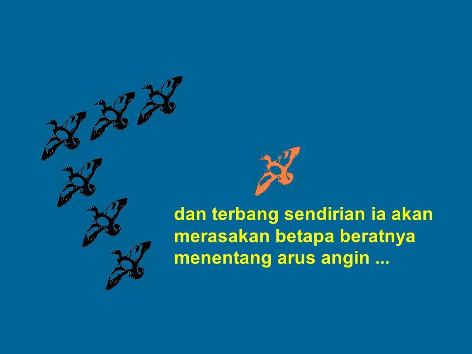 dan terbang sendirian ia akan merasakan betapa beratnya menentang arus angin ...
