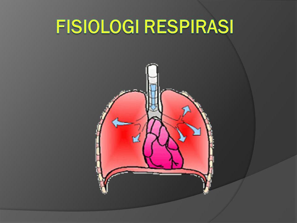 FISIOLOGI RespiraSI