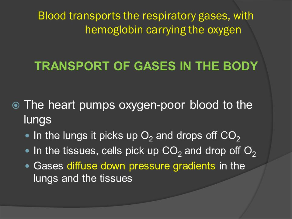 TRANSPORT OF GASES IN THE BODY